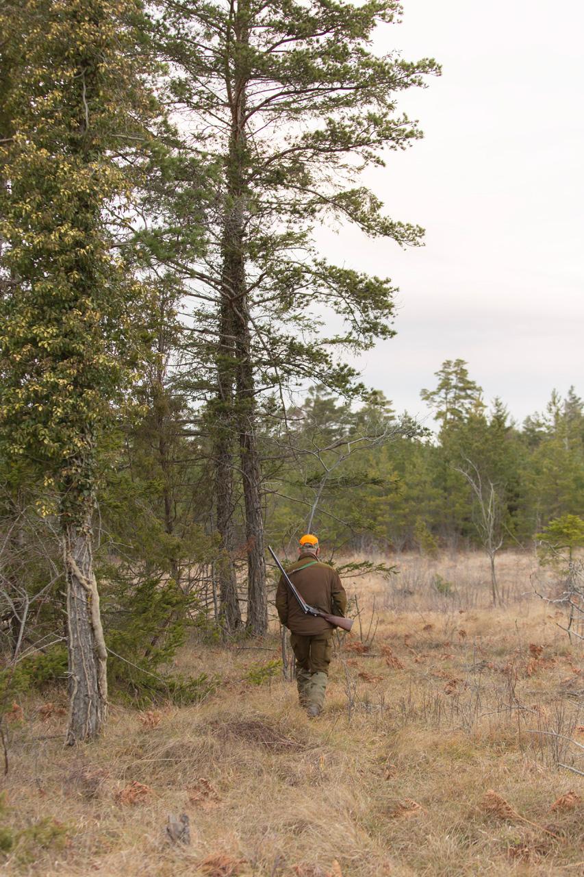 Jakt vandring i skogen Alexa Produktion